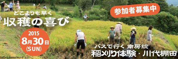 Top-page-baner_kawasiro
