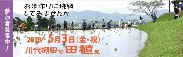 【イベント】田植え体験のお誘い<鴨川市・川代棚田>