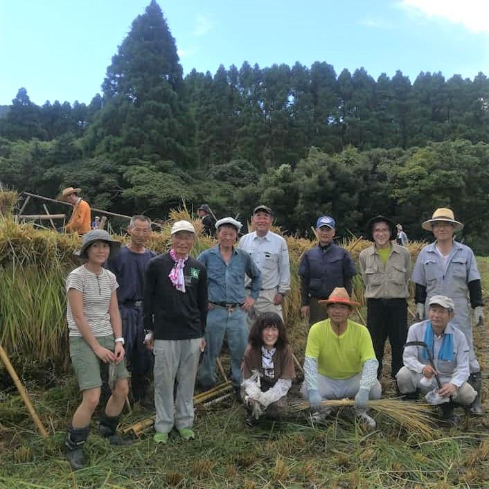 川代棚田で稲刈り体験2020を実施しました。